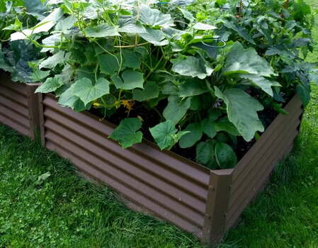 rustic medio garden bed